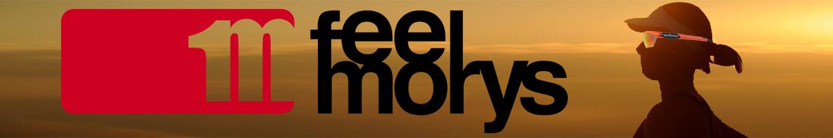 FeelMorys